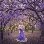 Dance of the Jacarandas – 8×10″ limited edition print