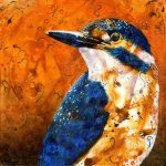 Kingfisher – Ltd Ed Print
