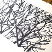 tree-branches