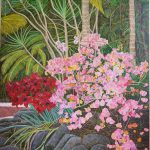 Day Lilies & Bougainvillea, Coorabell. Byron Bay