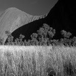 Ltd Ed Giclee Print – ULURU MORNING