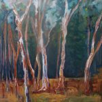 WHERE THE GUM TREES MEET THE PINE FOREST