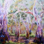 GUM TREES BY THE MURRUMBIDGEE RIVER