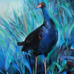Purple swamphen porphyrio VIII