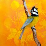Feathery All-sorts No 6 – Crested Shrike Tit