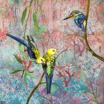 Equilibrium - pale headed rosellas and azure kingfisher
