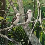 Kookaburra Tree