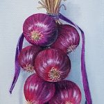 String of Red Onion