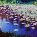 Lily pond colours