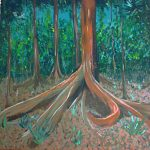 Forest Tree Roots A