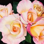 Morning Roses – Ltd Ed Print on Canvas