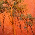 Outback Orange – Ltd Ed Framed – The Australian Outback Photography Series