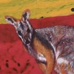 Black Flanked Rock Wallaby 300x300 Acf Cropped