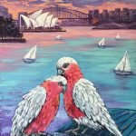 Galah Cockatoos at Sydney Harbour
