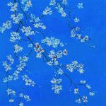 White Blossom flowers on Blue