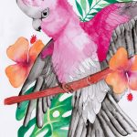 Pink and Grey Galah with Hibiscus