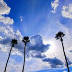 Palm Springs Skies